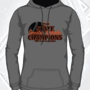 greater_latrobe_piaa_baseball_gray_hoodie