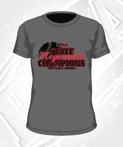 meyersdale_piaa_baseball_gray_short